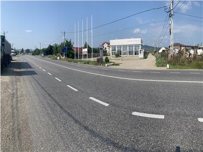 Teren 1.815mp - com. Nicolae Balcescu - E85
