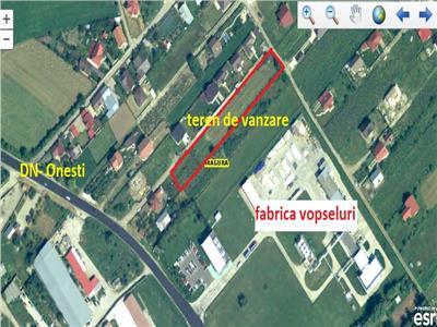 Magura Farbe - aproape de DN - COMISION0%